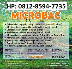 Fungsi Bakteri Pengurai Limbah